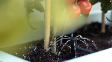 Intelligent Planter